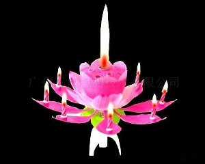 Magic Flower candle