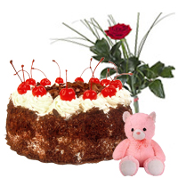 1kg Black Forest Cake with Small Teddy and Single Red Rose