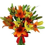 12 pcs lily fiower