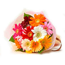 10  fresh mix gerbera bunch