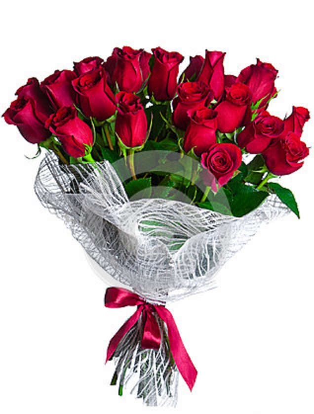 15 fresh red roses